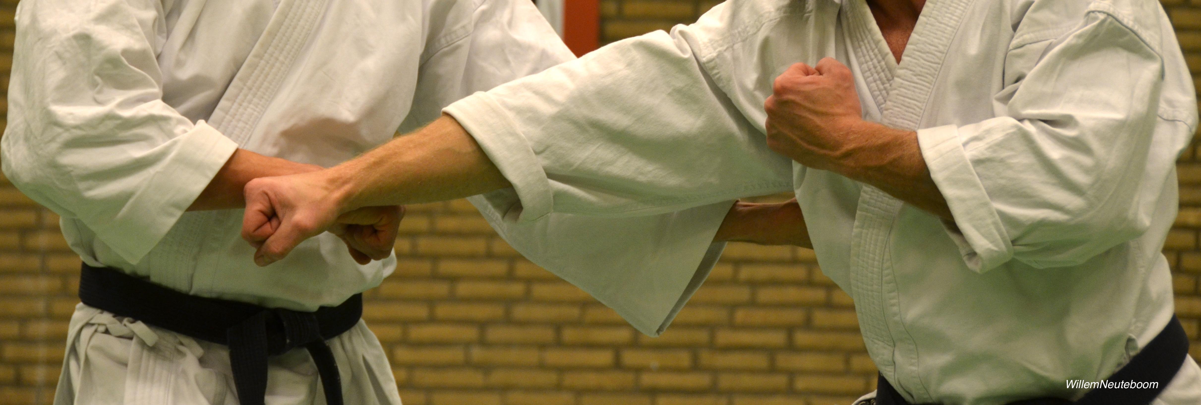 DSC_0210-1 Karate A&E+tag